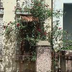 Casa com rosas em Cienfuegos