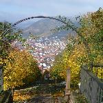 Blick auf Großheubach vom Kloster Engelberg