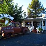 Front of Jaded Toad