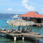 Dive dock