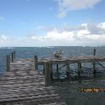 Sandy view