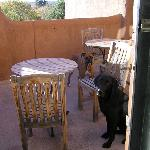 Jake and Junior enjoy the shared patio