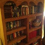 Bookshelf in the Lounge