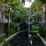 landscape in atrium to guest rooms
