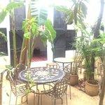 le patio au soleil!