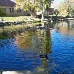 Mt. Whitney Fish Hatchery