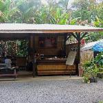 Roadside Open Cafe - Best Thai Food