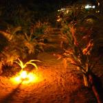 The sand pathways lit by torch at night