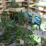 Atrium view from above