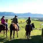 The picnic spot - with panoramic views of the Tulbagh and Wtizenberg Valley