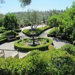 Buena Vista Terrace