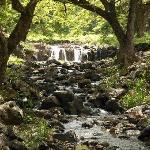 Lili' uokalani Botanical Garden waterfall