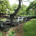 Lili' uokalani Botanical Garden park
