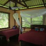 Delphin cabin interior