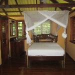 Cocos jungleside cabin
