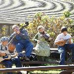 Clancy and the Rag Tags perform at the folk center.