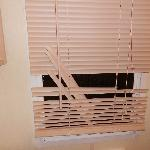 broken bathroom blind
