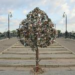 Love Tree on the Bridge of Kisses in Moscow