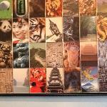 Some of the artwork at Iyara