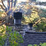 Cottages--smelled so good