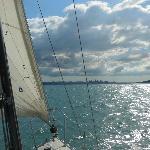 Sailing towards Auckland