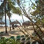 Playa muy agradable con sombra de palmeras