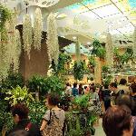Flower Market scene - Mongkok