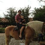 caballo de raza