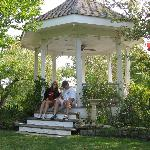 "Gazebo (""Queenie"" and us)"