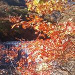 Photo de Nishizawa Canyon