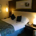 Radisson Hotel Room