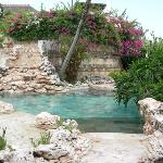 villa pool waterfall view! looks like natural ocean coral streams to the pool!