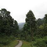 Road to Suntalekhola