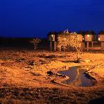 Photo of Alex Safaris Day Tours