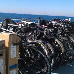 The ferry bike rack - Catalina triathlon! Our bikes are the slow ones with the FAT tires-