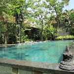 Kampung Kecil - swimming pool