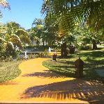 Hotel grounds...beautiful!!