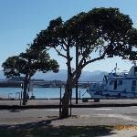 船着場の風景