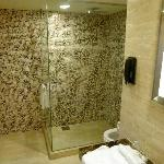 Premier Exec Room Shower