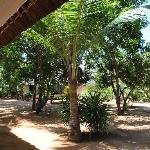 la veranda delle camere
