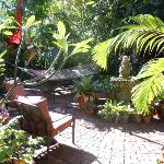 The garden oasis