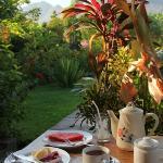 le petit déjeuner servi sur la terrasse de la chambre