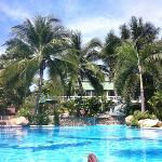 vue la piscine, bungalows à l'arrière plan