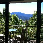 Looking out from the Sth Birches Spa Chalet