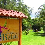 Cass Batsu