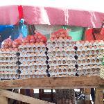 Market Square - local fresh eggs
