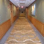 hall ways
