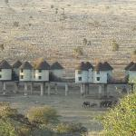 Saltlick Game Lodge