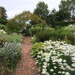 View of one of the many flower beds.