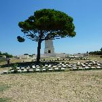 Lone Pine - Anzac Cove Gallipoli
